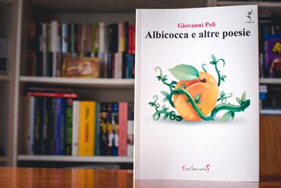 albicocca01